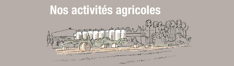 Nos activités agricoles