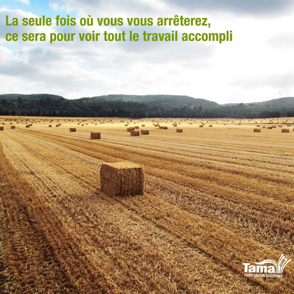 Ficelle Agricole