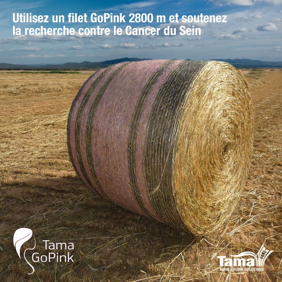 GoPink Edge To Edge 2800m