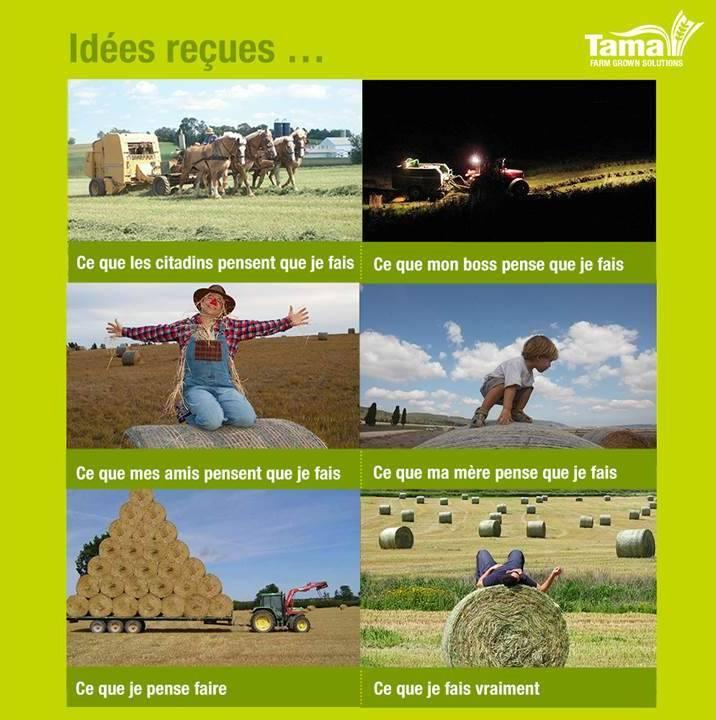 Tama bouleverse les idées reçues « Tama France