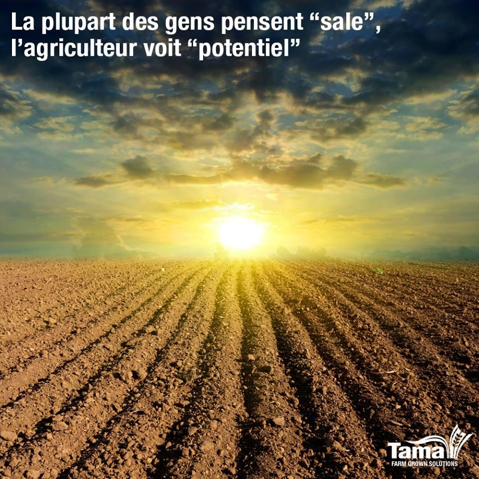 La terre est nourricière, l'agriculture dynamise cette qualité