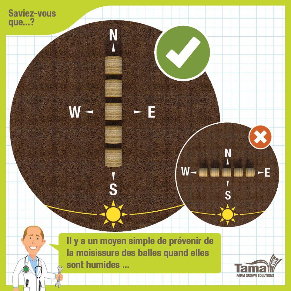 Il y a un moyen simple de prevenir de la moisissure des balles quand elles sont humides