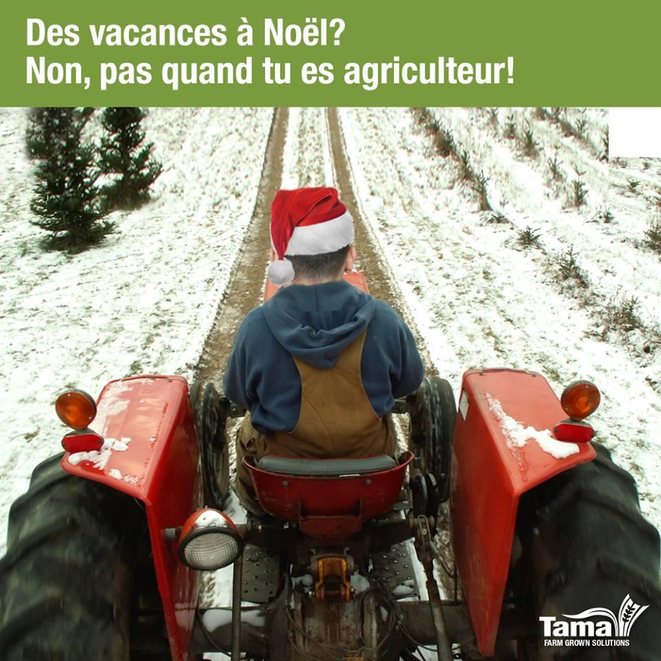 Des vacances à Noël? Non, pas quand tu es agriculteur!