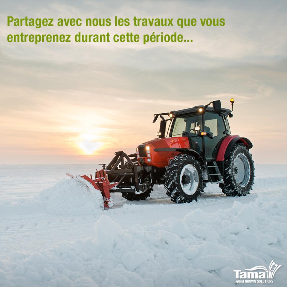 Le travail au champs pendant l'hiver