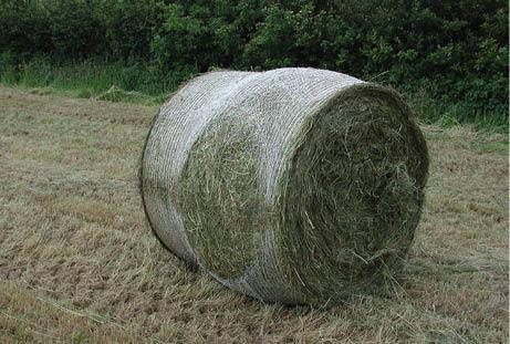 Bale damage