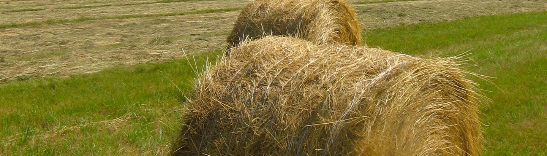 Teufelberger Round Bale twine | Teufelberger Round Bale twine